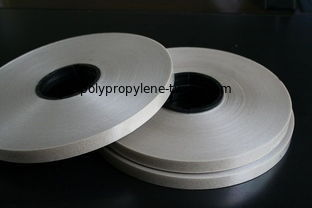 Good Quality Polypropylene Twine & Fire Resistant Mica Insulation Tape , Phlogopite Mica Tape SGS Certification on sale