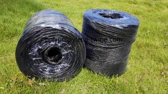 Good Quality Polypropylene Twine & 1mm - 5mm Diameter PP Twisted Rope / PP Baler Twine For Agriculture on sale