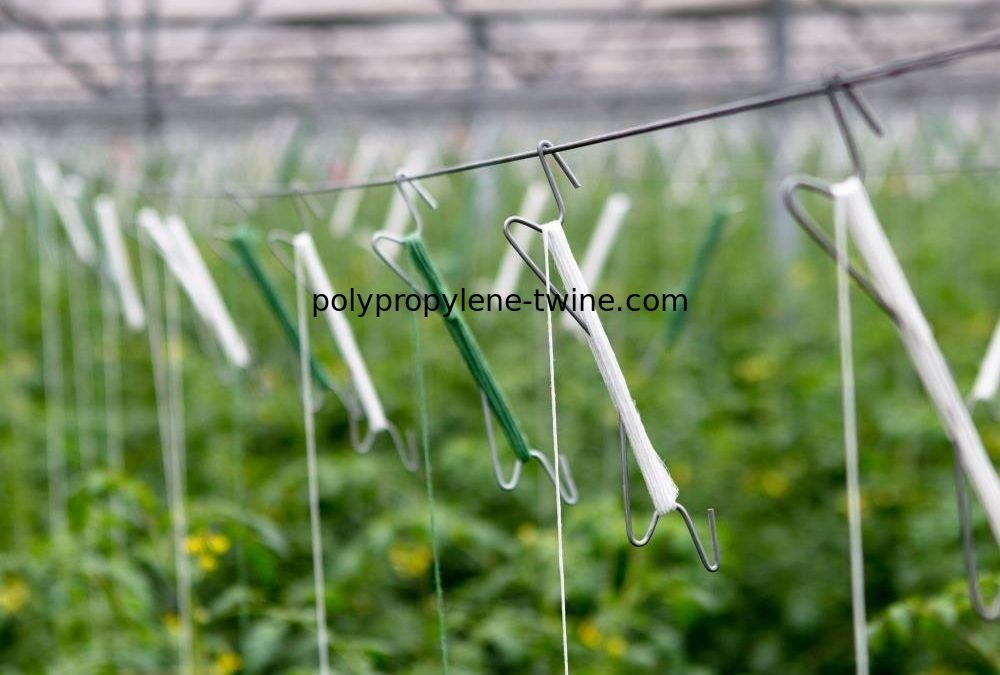 12M Length Polypropylene Tomato Twine For Greenhouse Planting Support