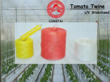 China 1mm 1.5mm Colorful Polypropylene Twine For Tomato Tying / Poly Twine Rope factory