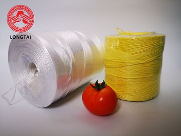UV Protection Colorful Agriculture PP Tomato Twine